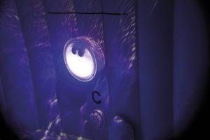 28503_purple.100dpi